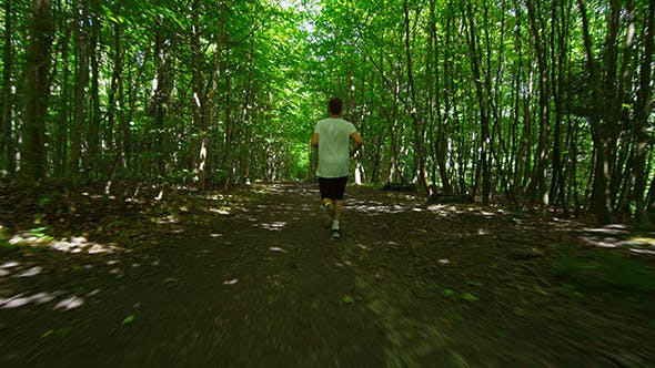 Thumbnail for Young Man In Sportswear Running Amidst Trees