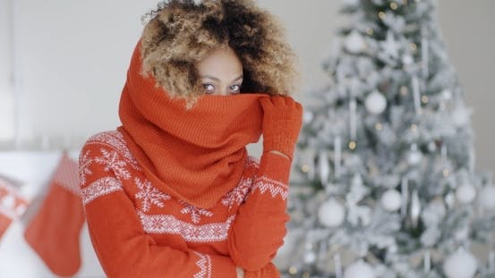 Thumbnail for Fashionable Young Woman At Christmas