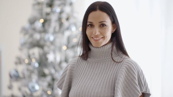 Thumbnail for Gorgeous Fashionable Young Woman At Christmas