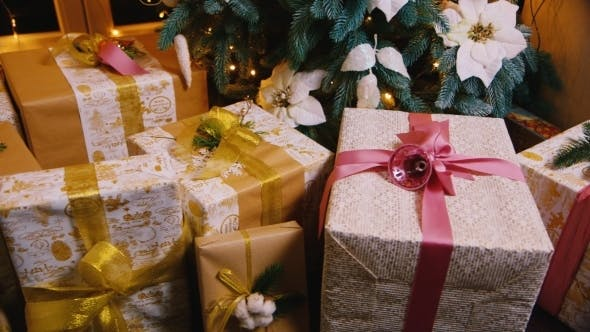 Cover Image for Christmas Gifts Under The Christmas Tree