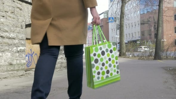 Thumbnail for Girl With Shopping Bag Walking In The Street