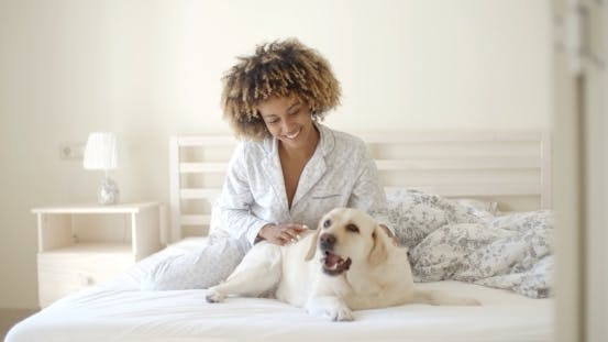 Thumbnail for Woman Is Holding A Dog On A Bed