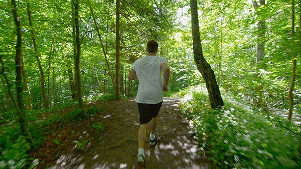 Thumbnail for Sporty Young Man Running On Trail