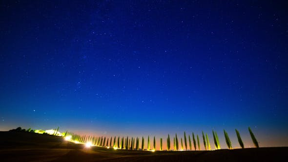 Starry Sky over the Cypress Alley