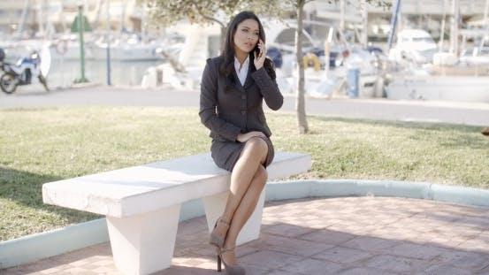 Thumbnail for Geschäftsfrau mit ein Gespräch