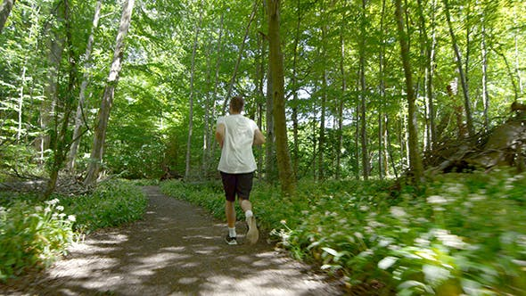 Thumbnail for Young Man Running On Trail