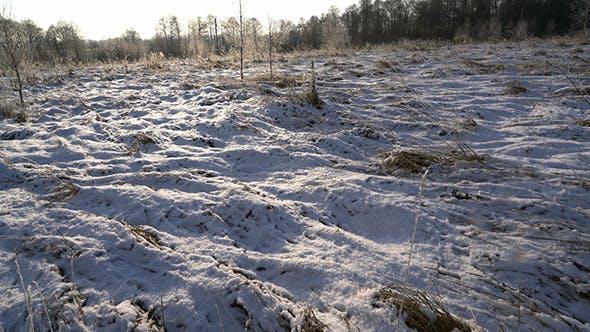 Thumbnail for Snowfall at Winter Snowy Field