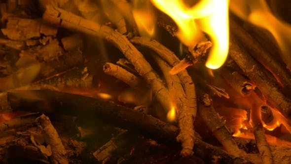 Cover Image for Wooden Sticks In Campfire