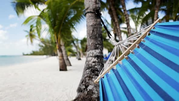 Thumbnail for Close Up Of Hammock Swinging On Tropical Beach 1