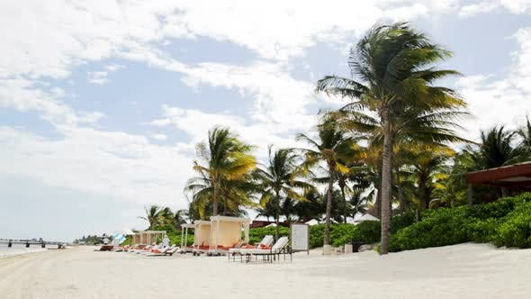 Tropical Beach With Palm Trees And Lounges 2