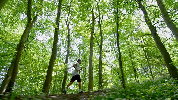 Thumbnail for Young Man In Sportswear Running Through Trees