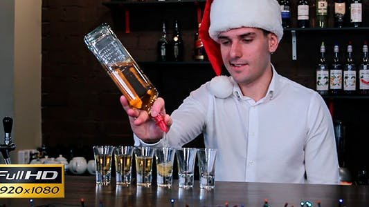 Thumbnail for The Bartender in the Cap of Santa Claus