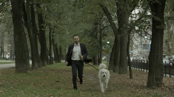 Thumbnail for Businessman Running With Big White Dog In Alley Of