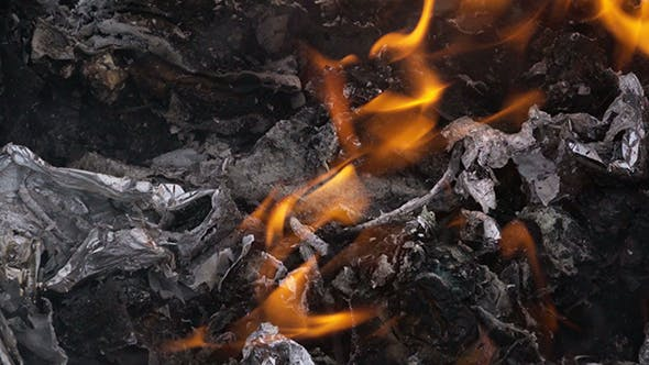 Cover Image for Garbage Fire in Steel Barrel