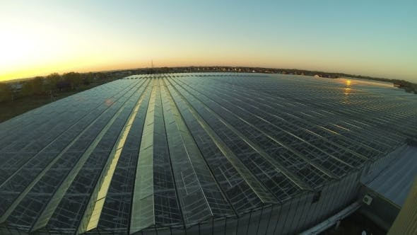 Thumbnail for Roof Of The Industrial Greenhouse