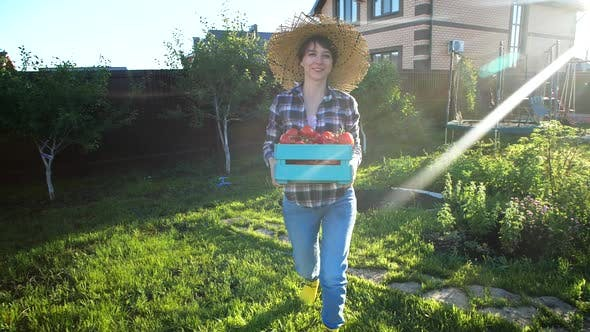 Thumbnail for Concept of Hobbies and Country Life. Beautiful Woman Holding Box of Fresh Vegetables