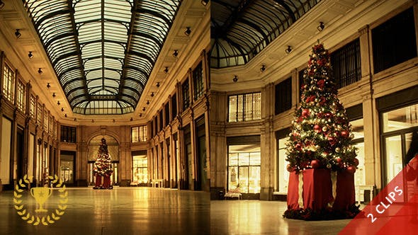 Thumbnail for Christmas Tree in a Shopping Gallery