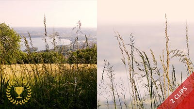 Countryside and Lake