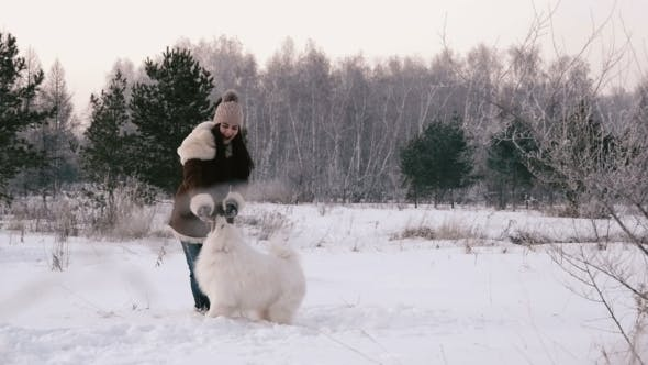 Thumbnail for Cheerful Girl Playing With a Dog On a Snowy Meadow