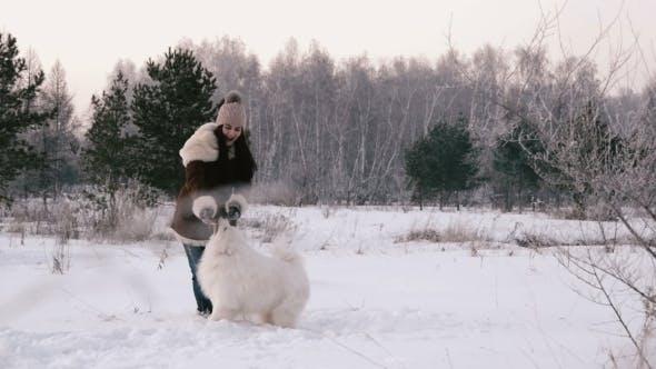 Thumbnail for Fröhlich Mädchen spielen mit einem Hund auf einer schneebedeckten Wiese