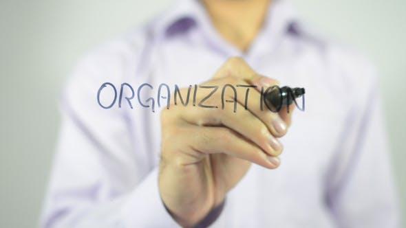 Thumbnail for Organization