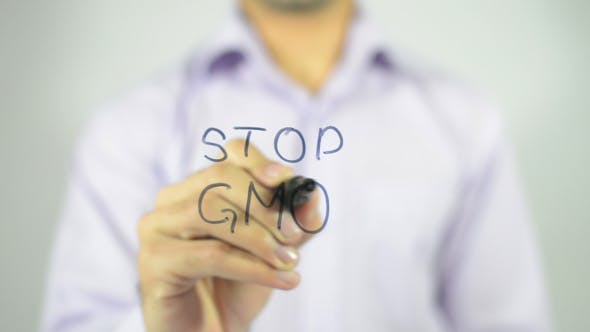 Thumbnail for Stop GMO
