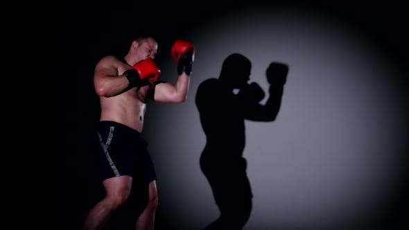 Boxer Is Boxing. Shadow Boxing