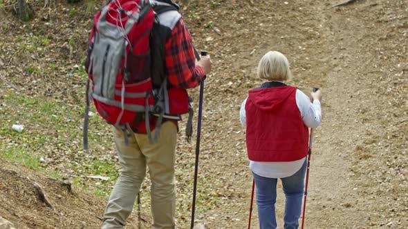 Thumbnail for Elderly People Trekking in Forest