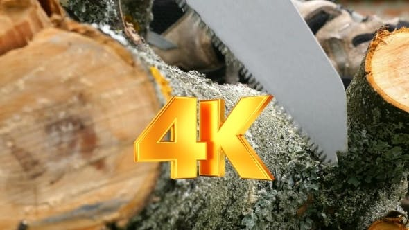 Thumbnail for Cutting Wooden Log With Handsaw