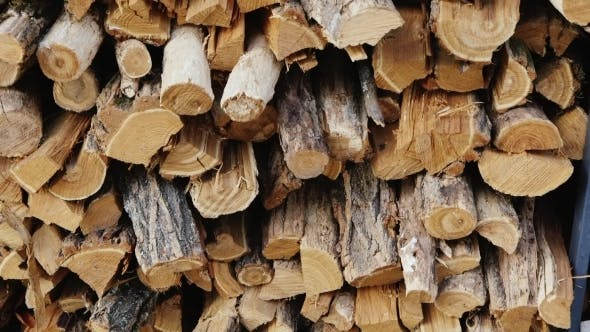 A Lot Of Firewood For The Stove