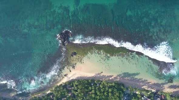 Thumbnail for Foaming Ocean Waves Roll on Sandy Coastline with Green Grass