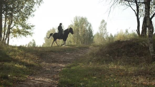 Thumbnail for A Picturesque Shot, the Silhouette of a Young Rider on a Horse on a Hilltop on a Quiet Summer