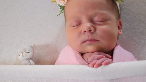 Newborn Girl in Costume Elegant Dress Sleeping in Small Bed Beautifully Decorated with Flowers