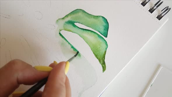 Woman painting Monstera leaf with Watercolors close up