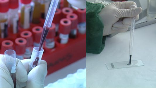 Thumbnail for Microbiology Laboratory