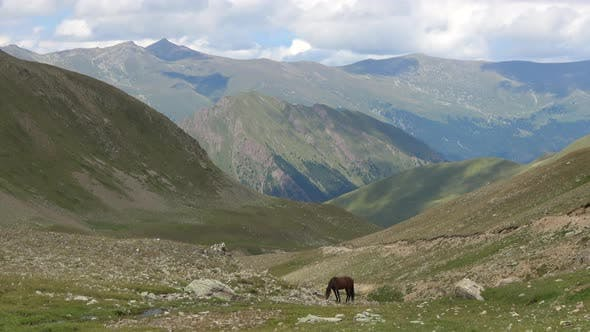 Thumbnail for Valley scenes in national park of Dombay, Caucasus, Russia