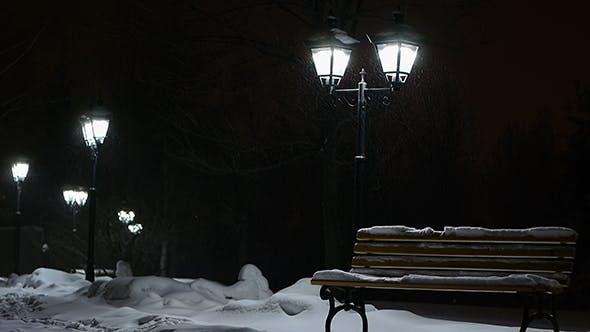 Snow Falls In Park 2