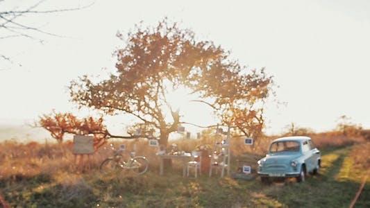 Happy autumn day - Photo Gallery