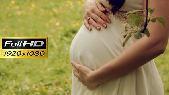 Thumbnail for Pregnant Woman In The Park