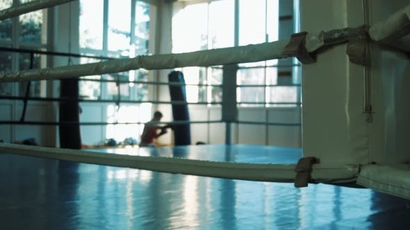 Thumbnail for The Young Boxer Training With Punching Bag In Gym