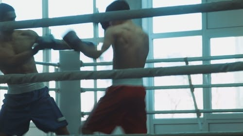 Training Sparring Of Two Boxers On a Ring