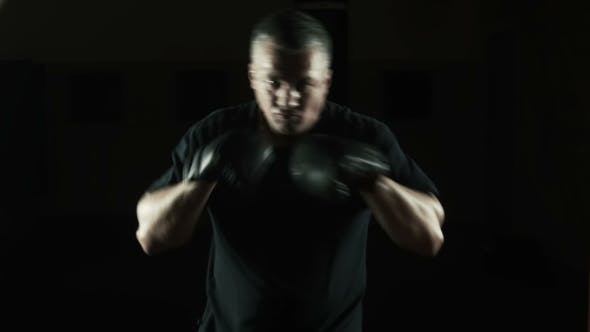 Thumbnail for Boxer Boxing On The Camera