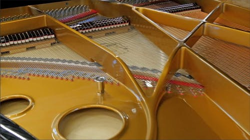 The Back of the Old Grand Piano and its Strings