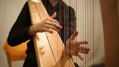 The Musician Plays the Harp