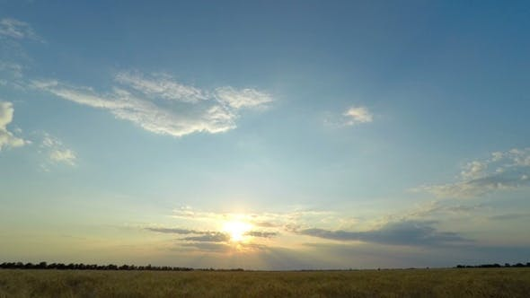 Thumbnail for Sunset Sky over a Wheat Field