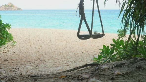 Cover Image for A Rope Swings On The Beach