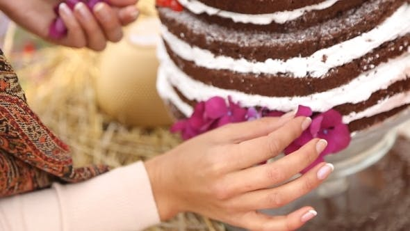 Thumbnail for a Girl Decorates a Cake
