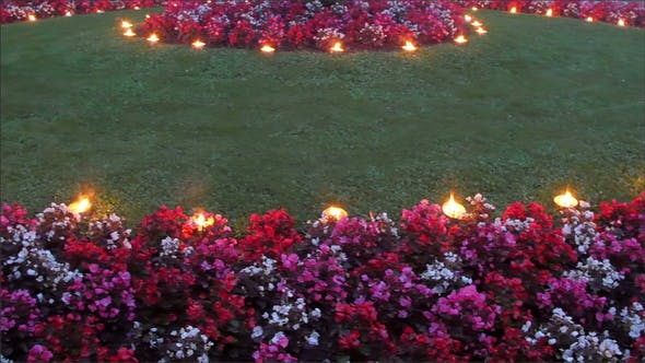 Candle Light on the Flowers in the Garden