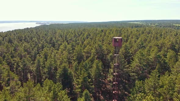 Thumbnail for High Landmark Tower Building in the Forest - Vast View