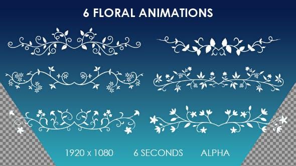 Thumbnail for 6 florale Ornamentanimationen